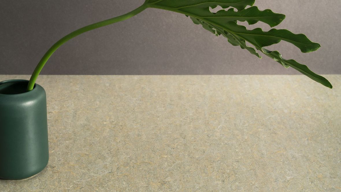 Marmoleum Terra 5801 river bank with plant